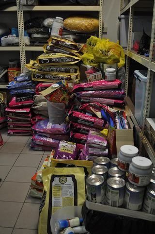 11 - dog food arranged into neat piles in the store room