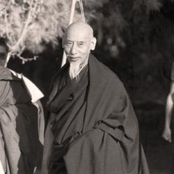 Kyabje Zong Rinpoche's Advice on Dorje Shugden's Practice