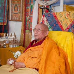 The Courage and Purity of H.H. the 101st Gaden Trisur Rinpoche