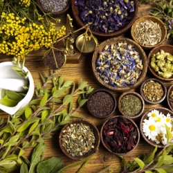 10 Herbs Used as Incense for Healing and Purification