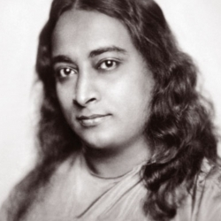 Paramahansa Yogananda: The Father of Yoga in the West