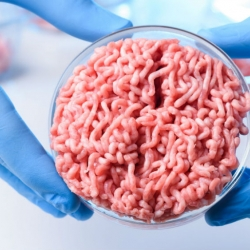 Is Ethical Vegetarianism Consistent with Eating Artificial, Laboratory-Grown Meat?