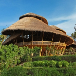 Amazing Trailblazing Green School in Indonesia – You Must Learn About This Incredible Place!