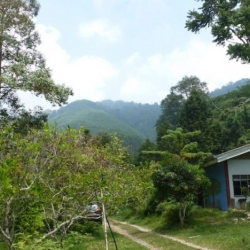 Living Off-The-Grid in Lenggong Valley, Malaysia