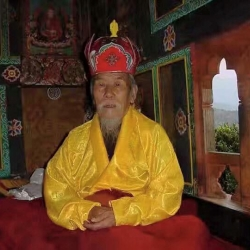 Rigzin Palden Rinpoche (Lama Serpo) – The Golden Lama