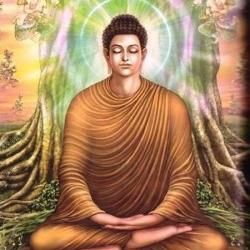 Gautama Buddha's life (1)