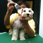 Oser's first haircut