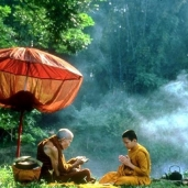 Forest Monks Passing Knowledge
