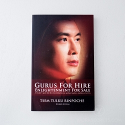 Gurus for Hire, Enlightenment for Sale– A Review