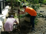 Planting in the Aviary - Volunteers are welcome. Please contact Jace Chong.