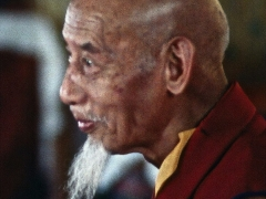Portrait photo of Kyabje Zong Rinpoche