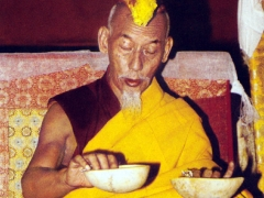 His Holiness Kyabje Zong Rinpoche