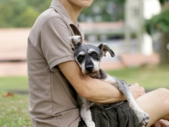 (5/01/2011) holding onto Mumu's mother Jessie. Jessie has terminal cancer and has only a few weeks left. Please pray for this little doggie's rebirth. Ms Elize is devastated. She loves her Jessie of over a decade. It breaks my heart to see this picture taken two weeks ago.