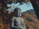 This gorgeous outdoor bronze Buddha is in Korea. Would be lovely to pay homage to Him there.