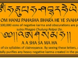 It would be wonderful if everyone can recite these two mantras 100k each focusing on Shakyamuni Buddha and His powerful healing energies. Not collectively but each person 100k each of each mantra. Praise to Shakyamuni the Sage who showed us a permanent way to bliss.
