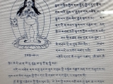 Kadroma Metsik Nakmo or Dakini Ucchusma who purifies and heals the body.