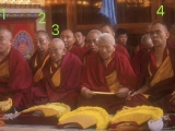 Many great lamas are pictured here together. I have met many of them and they are very learned and holy. Tsem Rinpoche