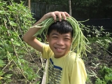 Liang Jing who found a wonderful organic hat to block out the sun! Liang Jiang is such a polite, well-mannered, easy going young adult who just cooperates with everything you ask him to help with. He is a delightful young person and he helps his dad maintain our organic vegetable patch on Kechara Forest Retreat land in Bentong, Malaysia.
