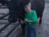 This poor boy is being forced to leave his friend to be sold for slaughter. Children have a natural connection with animals, and they know it is wrong to hurt and kill them. Children lose this connection by being indoctrinated (brainwashed) by their parents/peers into believing animals are here to be exploited, killed, and eaten.- from Lucinda Smyth FB page