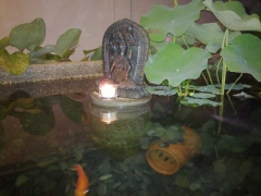 Beautiful sacred holy Vajra Yogini at night on the outdoor fish pond next to my bedroom. I love watching all the fishes swim around her and plant seeds of Buddhahood in their mindstreams. See the orange Koi swimming by?? Nice and peaceful at night. I have koi, oscars, parrot fishes, sucker fishes, river fishes all in this pond.