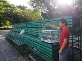 Mr. Chan Weng Khong released the birds after the mantra recitations. So Kin Hoe (KISG)