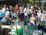 Children!!! Let's shake hand with raccoon.is OK , dun feel scared teachers hold it hand.By Asyley Chia KSDS