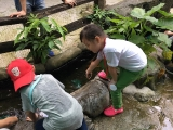 Guess what the children doing?By Asyley Chia KSDS