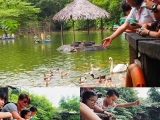 The lake so big slot of fish and swan here, By Asyley Chia KSDS