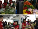 We distributed 250kgs worth of #surplusfood collected from Tesco Malaysia AEON Retail Malaysia and HeroMarket to some 40 families consisting 138 individual households today at PPR Hiliran Ampang. Such great honour to have Tengku Zatashah joining us today to the distribution today. The recipients were very happy (and lucky too) to see a Princess serving them food! We were short of volunteers and thanks so much for helping! - Vivian @ Kechara Soup Kitchen