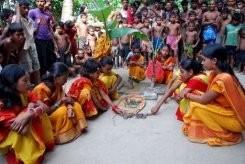 Bangladesh farmers turn to 'frog weddings'