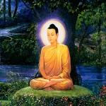 BuddhasforDownload