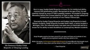 89 - His Eminence Kyabje Gelek Rinpoche of Drepung Loseling Monastery