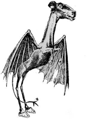 The Jersey Devil. Although the last sighting was in 1909, the Jersey Devil continues to fascinate cryptozoologists.