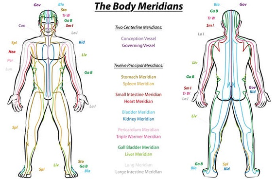 Healing traditions all spoke of energy channels, sen, meridians or nadis
