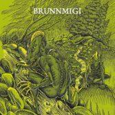 Brunnmigi