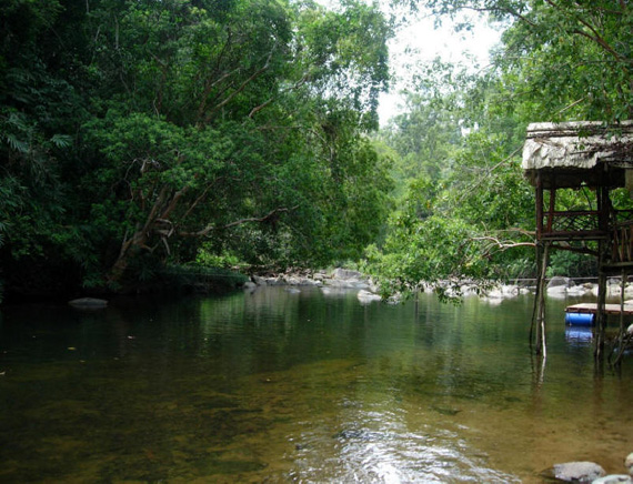 Endau-Rompin National Park is perfect for nature lovers and adventure seekers