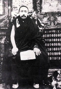 H.H the 9th Panchen Lama, Thubten Choekyi Nyima, Image credit: wikipedia. Click to enlarge.