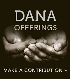 Dana Offerings