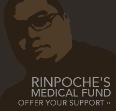 Rinpoche's Medical Fund