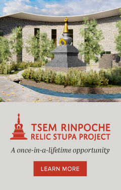 Support Tsem Rinpoche Relic Stupa Fund